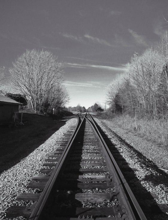 trainbandw